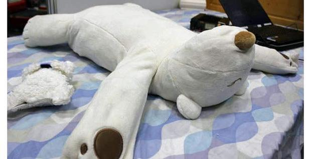 Looking for snoring solutions? Get a polar bear!