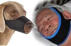 dog muzzle versus snoring chin strap