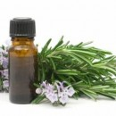 Herbal Remedies as Snoring Solutions